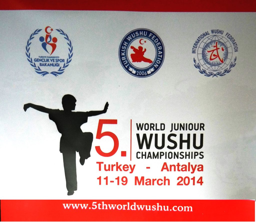 5th-world-wushu