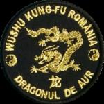 dragon-aur
