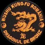 dragon-bronz